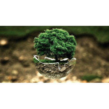 Экологические привычки