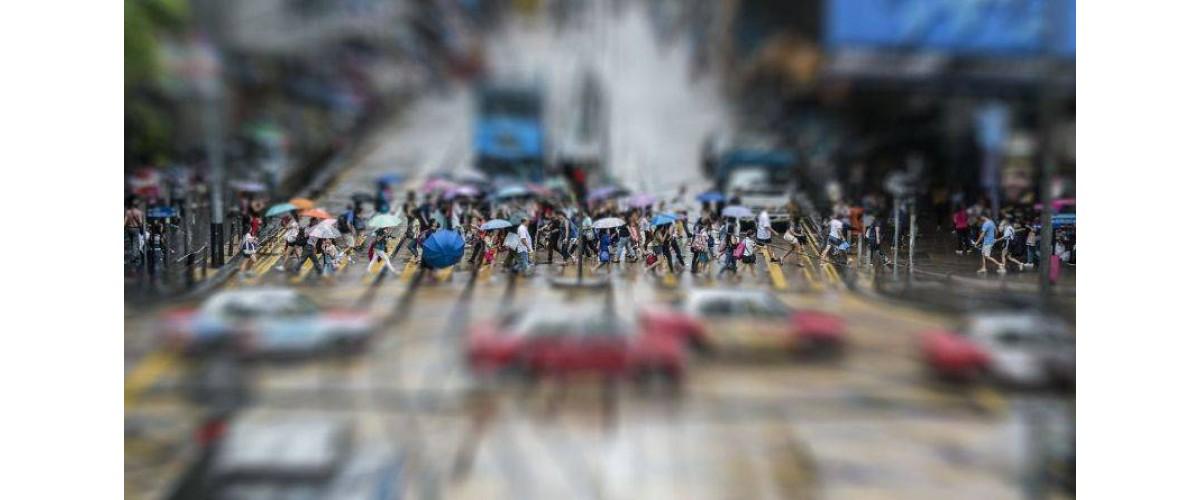 Психология стада: как не идти на поводу толпы и стать самостоятельной личностью