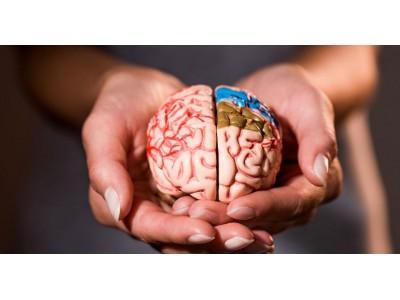 Работа мозга и настроение: как повлиять на свое самочувствие