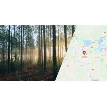 Финляндия: один день в Коувола