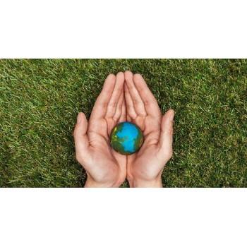 Философия Zero Waste: путь к экологичной жизни