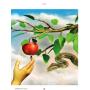 Журнал Колесо Жизни № 4 (134) '20 Пульс сердца: Испытания
