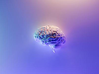 Оперативная память мозга: почему ее важно тренировать?