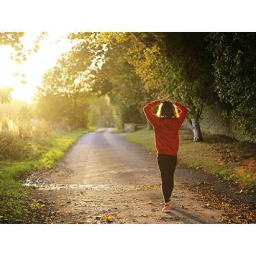 Мудрость тела на страже нашего спокойствия и благополучия
